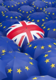 Brexit is causing driver shortages. Luckily, telematics fleet management can help
